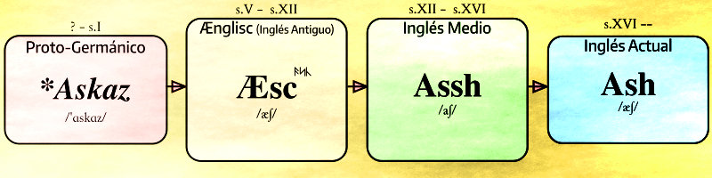 Anglosaxon Word
